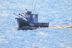 Coming to shore, Aldeburgh