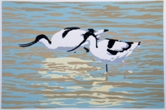 Avocets reduction lino