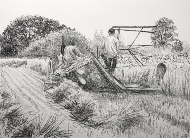 Day 6, 594 x 420mm, SOLD
