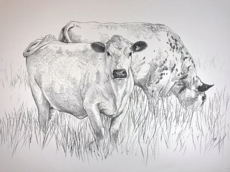 Day 45, 594 x 420mm, SOLD