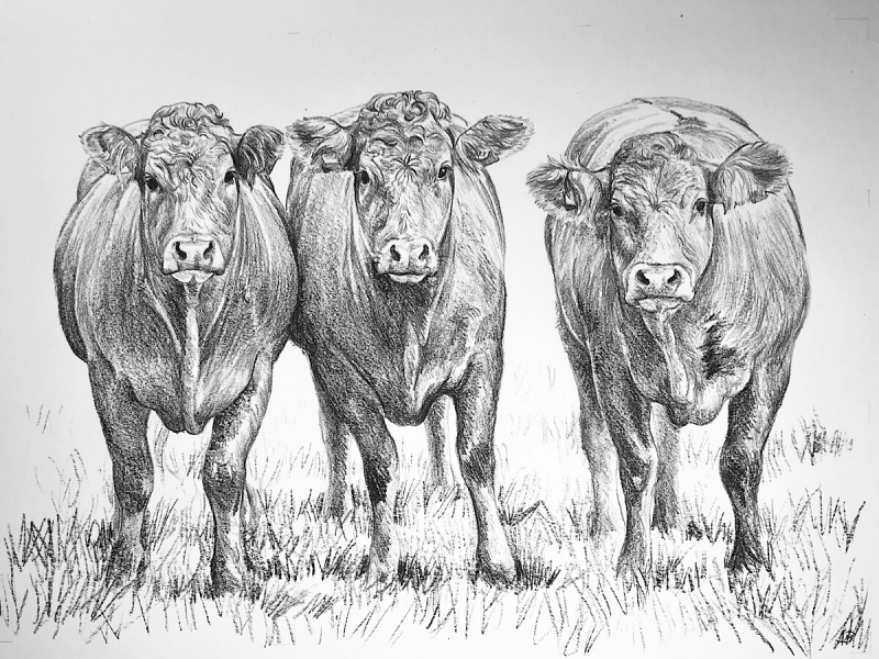 Day 71, 594 x 420mm, SOLD
